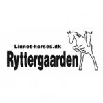 Linnet Horses er Klassesponsor til Rømø Beach Jump 2019